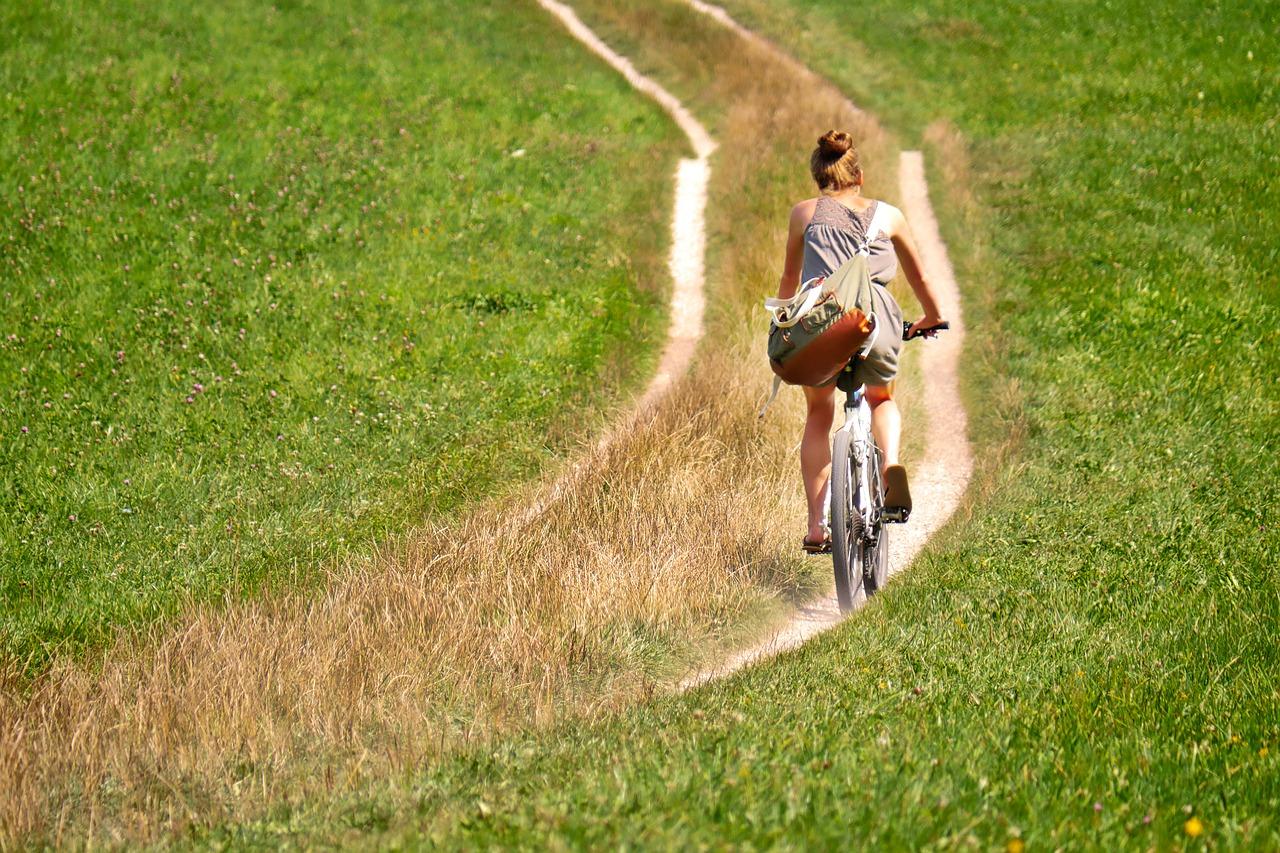 de koog fietsen